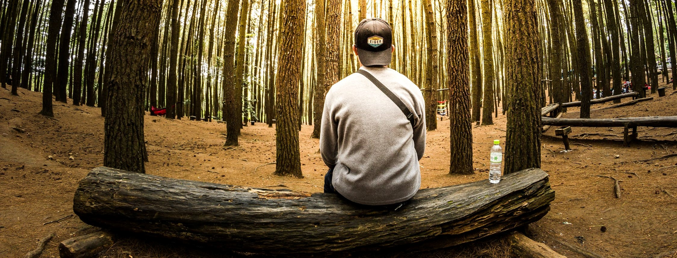 man sitting on log in the forest